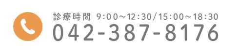 診療時間 9:00~12:30/15:00~18:30 042-387-8176